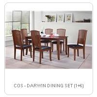 COS - DARWIN DINING SET (1+6)